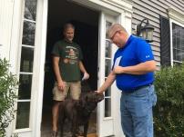 Always door-knock with dog biscuits!